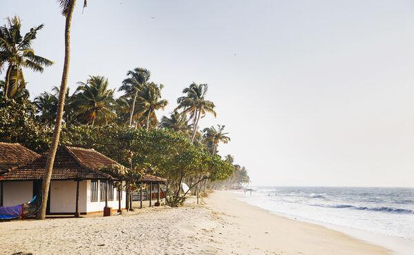 Ontdek de beste Ayurvedische bestemmingen van India