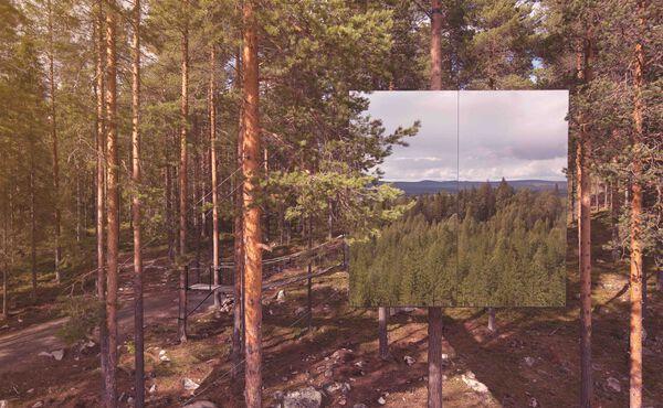 Upptäck vacker natur i din egen närhet