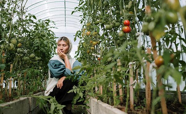 Jardins em terraços: um oásis secreto que faz bem ao mundo