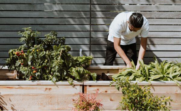 6 conseils alimentaires bons pour la santé et la planète