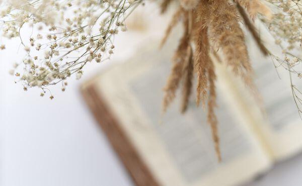 5 boeken die je meenemen op reis