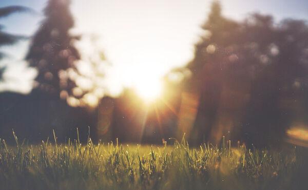 Descubre el significado de la luz en tu rutina diaria