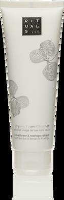 Creamy Foam Cleanser