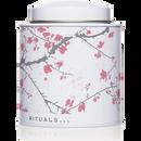 Authentic tea tin - Jasmine delight