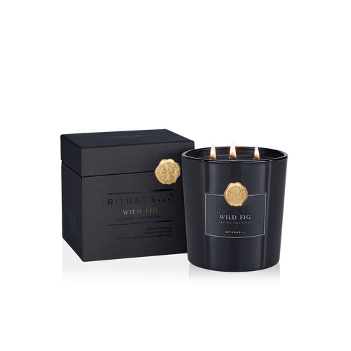 XL Wild Fig Scented Candle