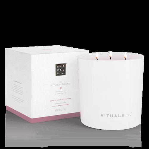 XL The Ritual of Sakura Candle